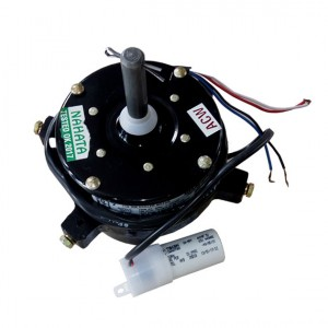 Manufacturer Of Electric Motor In Faridabad